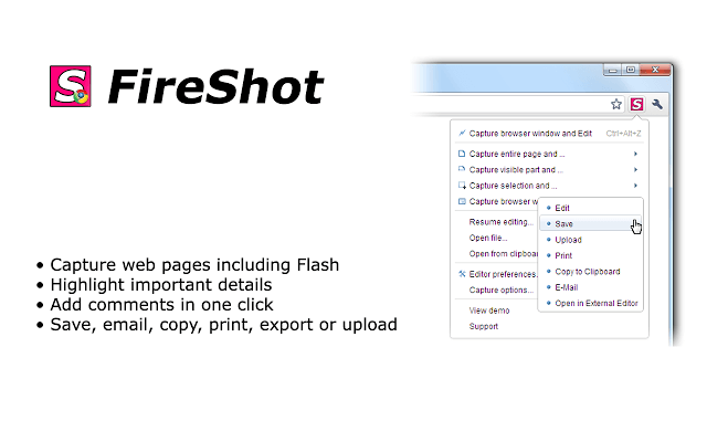 FireShot Chrome Extension