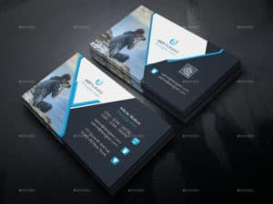Clean Examples of Professional Business Card Designs