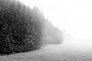 Realistic Mist Landscape Photoshop Effect Tutorial
