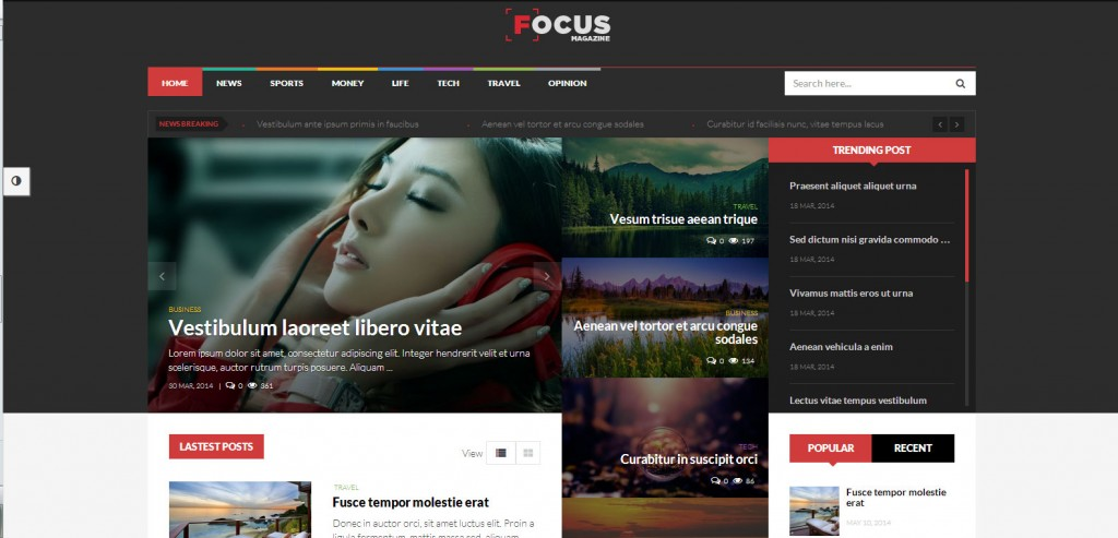 Focus-Top-Rated-Wordpress-Themes-for-Bloggers