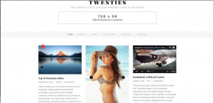 Twenties-Top-Rated-Wordpress-Themes-for-Bloggers