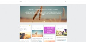 Zefir-Top-Rated-Wordpress-Themes-for-Bloggers