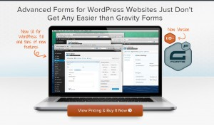 Gravity Forms Best Plugins WordPress
