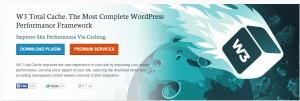 W3- Total Cache Best Plugins WordPress