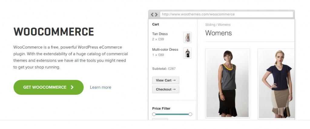 WooCommerce Best Plugins WordPress