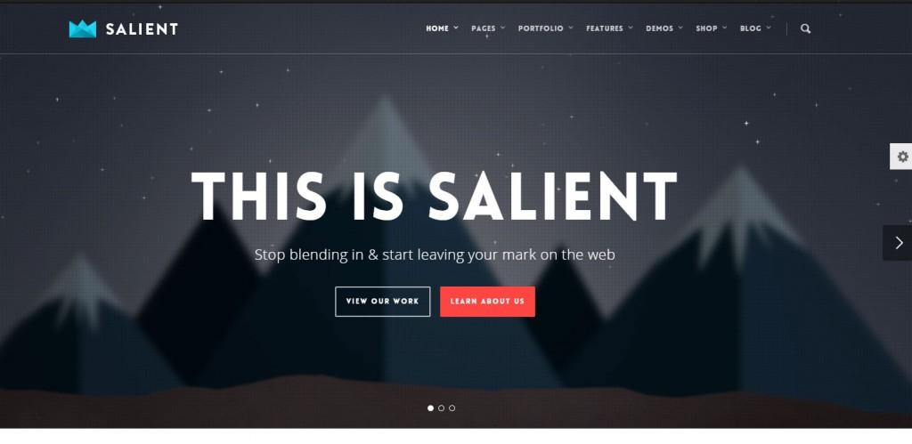 Salient Parallax WordPress Themes